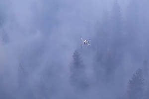 Drone sensors in action above the prescribed burn at Blodgett Forest.