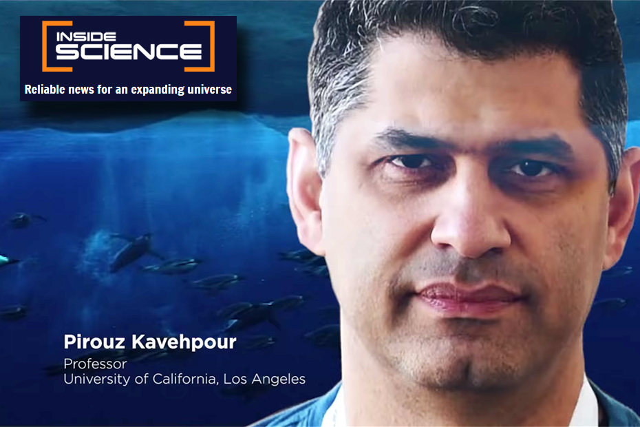 Pirouz Kavehpour in AIP Inside Science documentary on fluid dynamics in nature