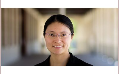 Lihua Jin receives the 2018 Extreme Mechanics Letters Young Investigator Award